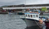 Covid-19: Barcos de pesca nos Açores apenas podem acostar ou descarregar na sua ilha
