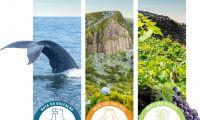"""Secretaria Regional dos Transportes, Turismo e Energia dá a conhecer projeto """"Rotas Açores"""" aos cursos profissionais de turismo da Região"""